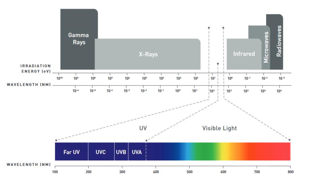 Machine generated alternative text: Gamma  Rays  X-Rays  110' I  Infrared  IRRADIATION  ENERGY (evl  WAVELENGTH (NM)  Far UV  WAVELENGTH (NM)  100  105  UV  UVA  Visible Light  UVC  200  WB  300  700  800